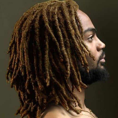 little locs in long hairstyles for men