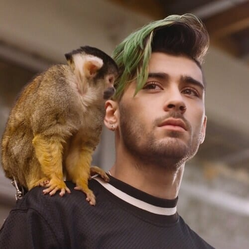 Green Zayn Malik Haircut