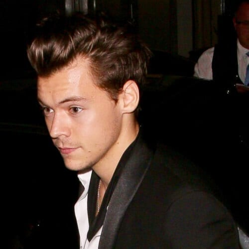 Small Pomp Harry Styles Haircut